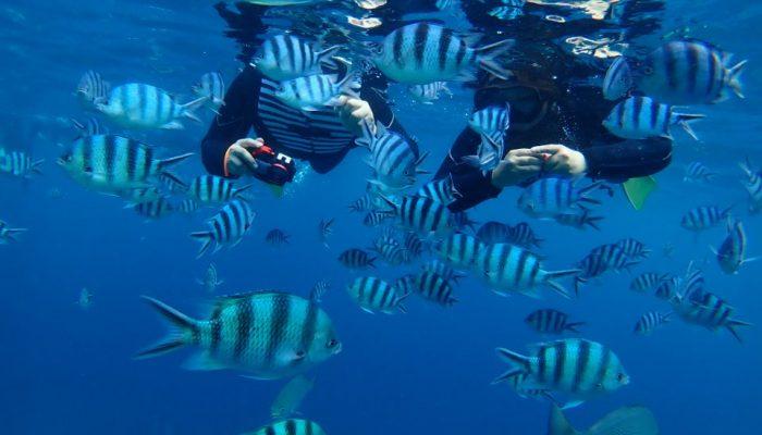hiro-sea-bluecave (9)